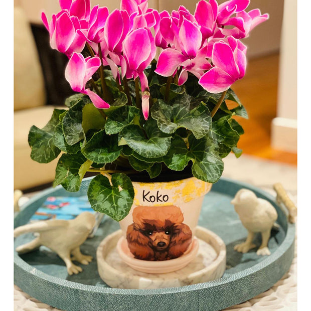 Poodle - Handcrafted Flower Pot | Soft Pink