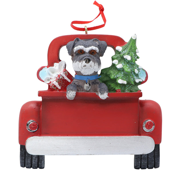 Christmas Schnauzer in red truck
