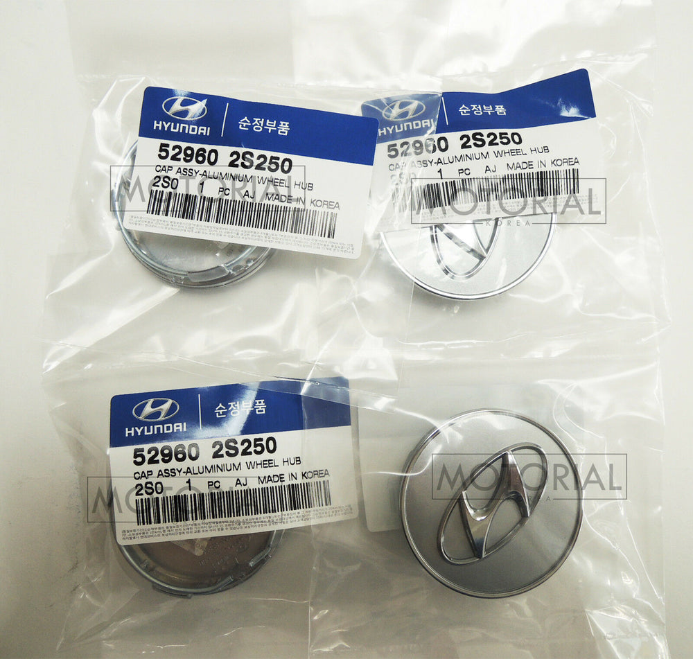 2010-2012 HYUNDAI SANTA FE Genuine OEM Wheel Center Hub Cap 4pcs Set 529602S250