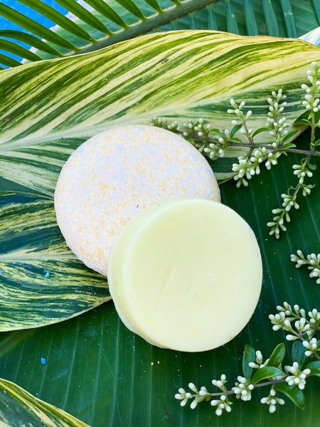 Sweet Macaroon Conditioner Bar