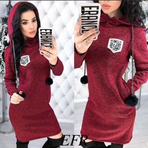 Image of Hooded Dresses Long Sleeve Straight Pockets - fashionniste