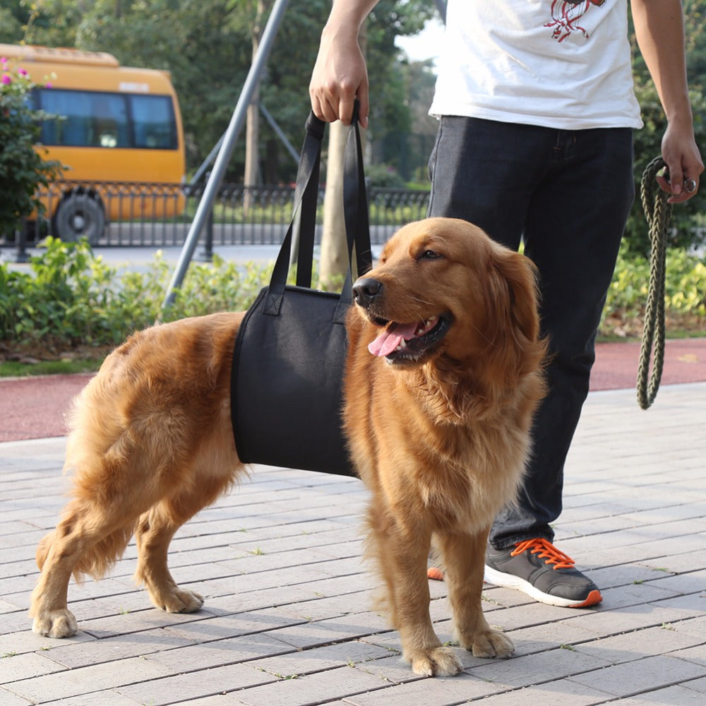 Hond Lift Ondersteuning Harnas Voor Aid Lifting Oudere Canine W ...