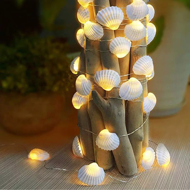 10 Sea Shell String Fairy Light