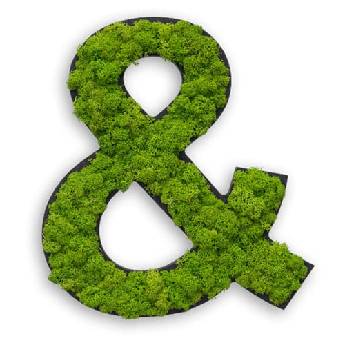 Special character - Ampersand - Reindeer moss