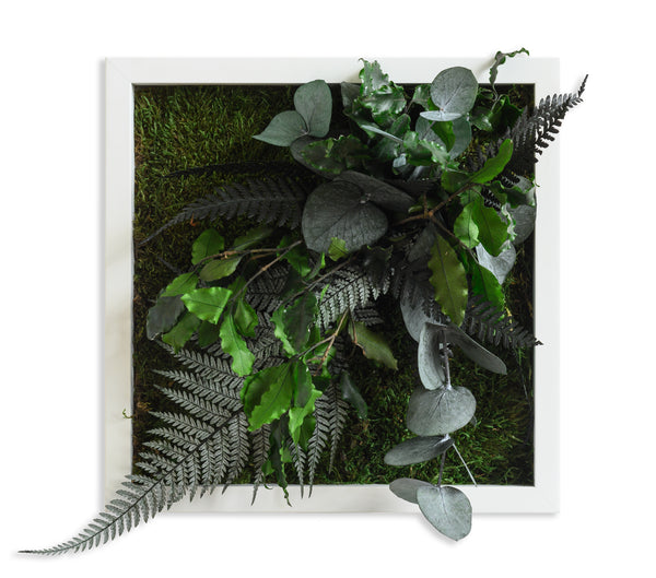 Stylegreen Verticale tuin - Jungle Design 22 x 22cm - Rebellenclub