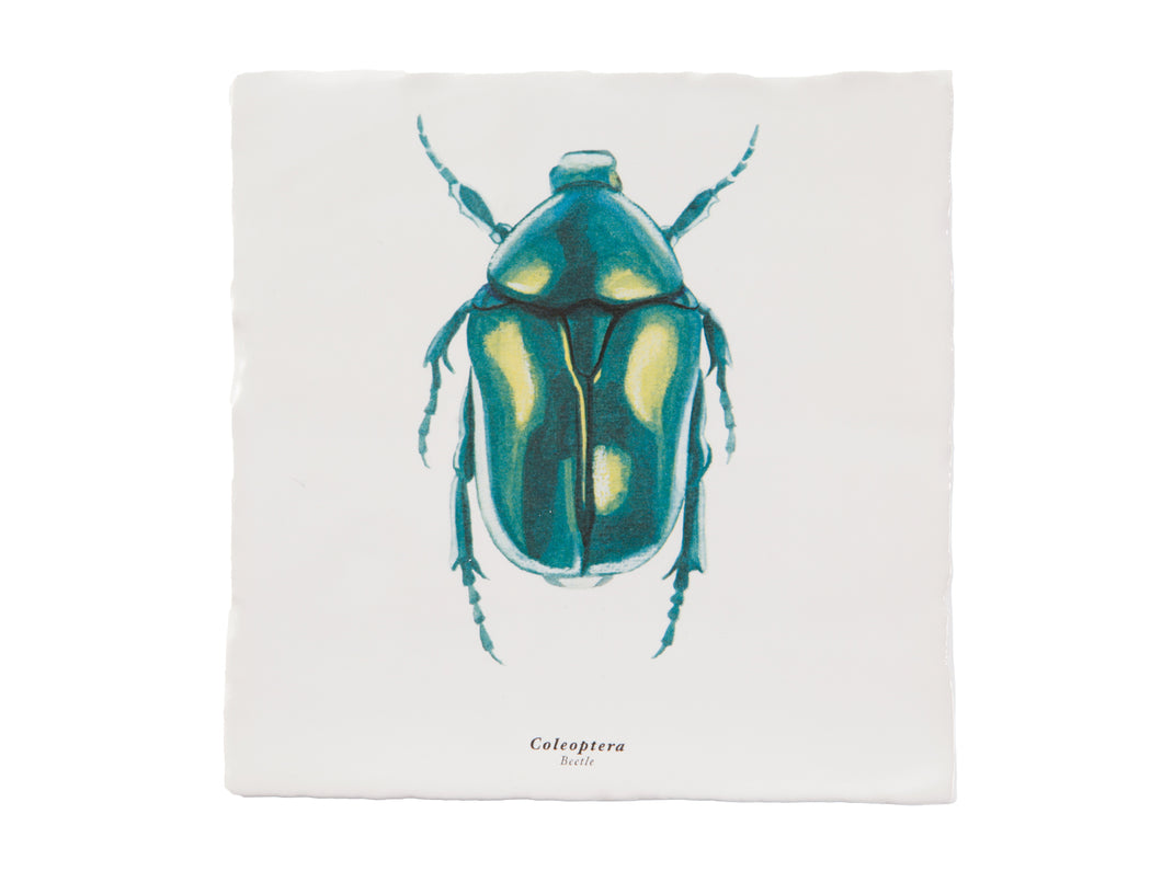 Rebellenclub x Lisa Tile - Beetle - Rebellenclub