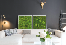 Afbeelding in Gallery-weergave laden, Stylegreen Verticale tuin - Forest & Pole moss - 80 x 80cm - Rebellenclub