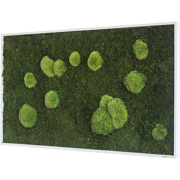 Stylegreen Verticale tuin - Forest & Pole moss - 100 x 60cm - Rebellenclub