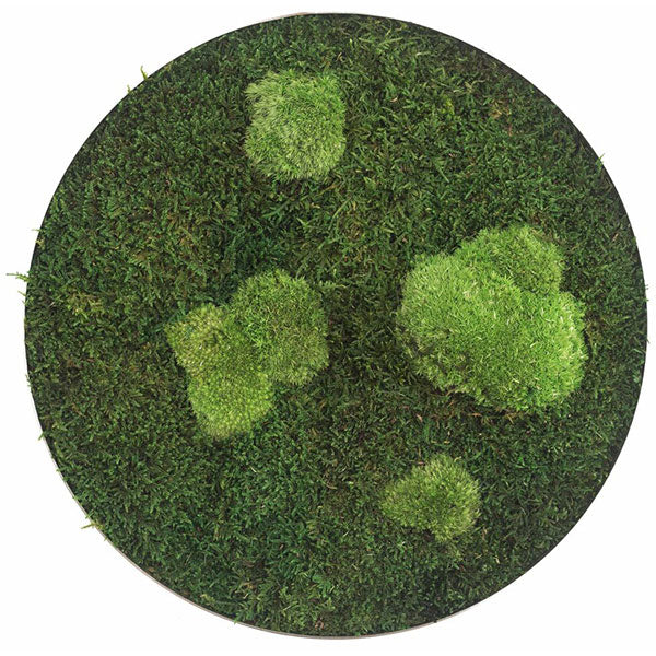 Stylegreen Ronde verticale tuin - Forest & Pole moss - Diameter 34cm - Rebellenclub