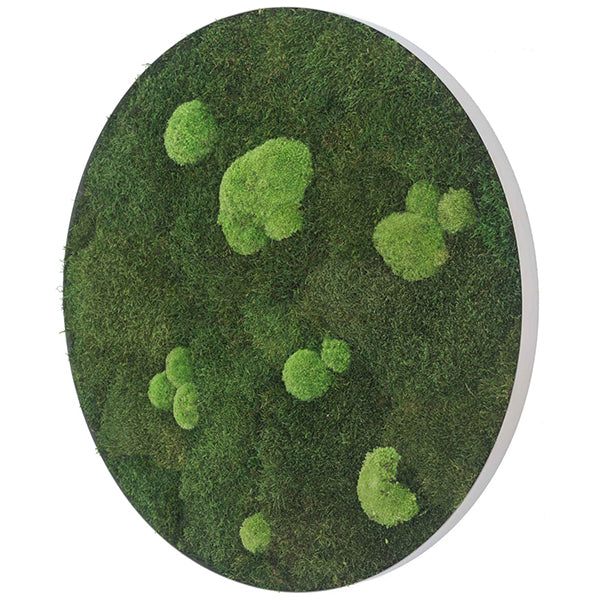 Stylegreen Ronde verticale tuin - Forest & Pole moss - Diameter 54cm - Rebellenclub