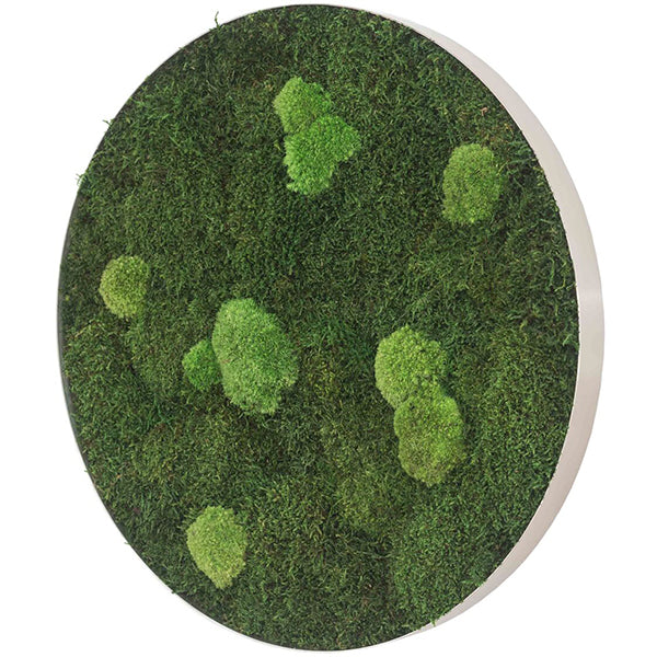 Stylegreen Ronde verticale tuin - Forest & Pole moss - Diameter 80cm - Rebellenclub