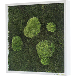 Stylegreen Verticale tuin - Forest & Pole moss - 35 x 35cm - Rebellenclub