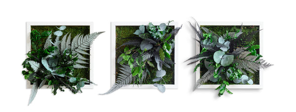 Stylegreen Verticale tuin - Jungle Design 22 x 22cm - Set van 3 - Rebellenclub