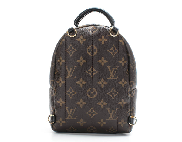 Louis Vuitton Palm Springs Mini Backpack