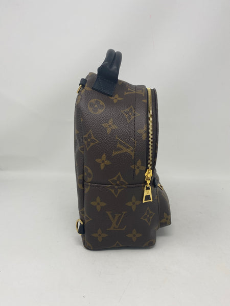 Louis Vuitton Palm Springs Mini New Model Monogram Backpack