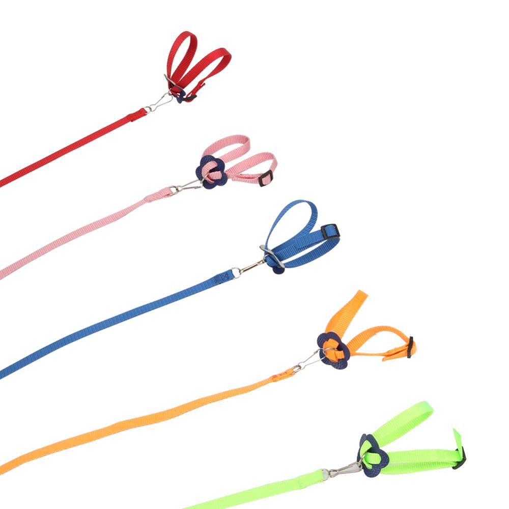 Adjustable Pet Harness Reptile Leash Turtle Gerbil Lizard Outdoor Training Soft Strap Anti bite Multicolor Light Traction Rope|Feeding & Watering Supplies|Home & Garden