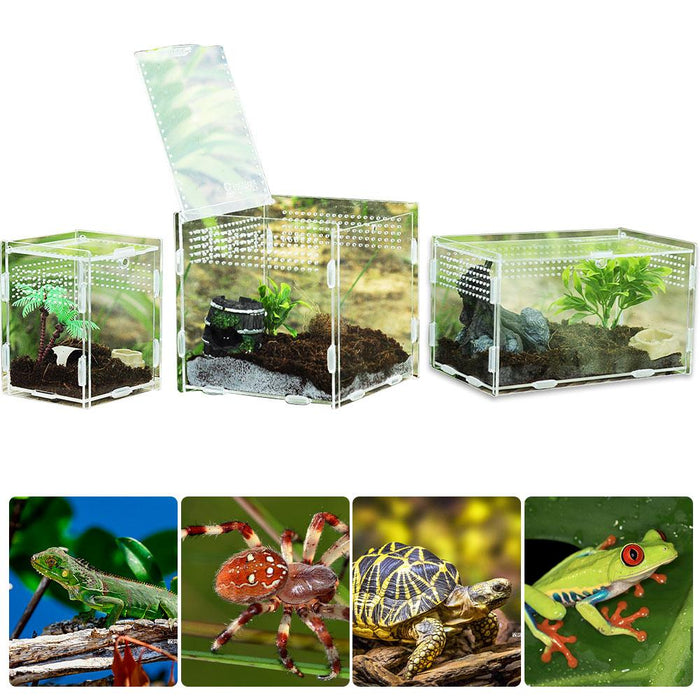 Multiple Vents Reptile Breeding Box Acrylic Transparent Reptile Tank Insect Spiders Scorpions Mantis Feeding Box Terrarium Tank|Terrariums|Home & Garden