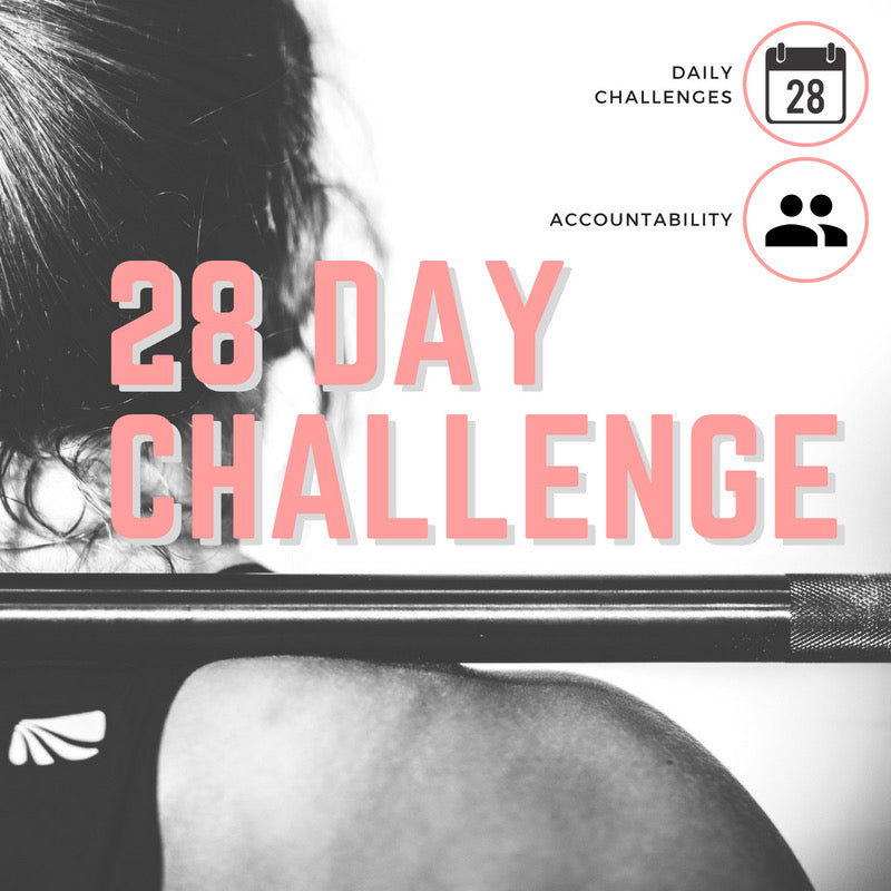 28 Day Accountability Challenge Guide (Ebook)