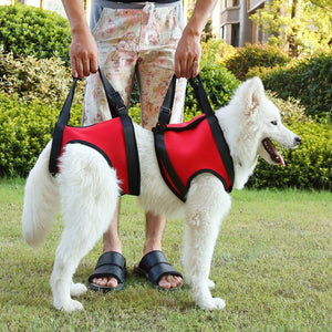 Dog Lifts Support Vest