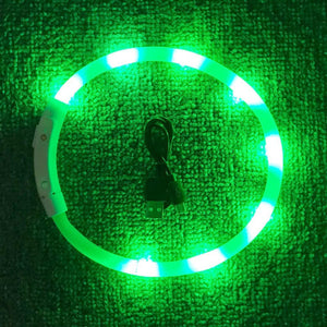 LED Light Tube Dog Collars