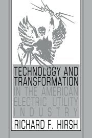 Technology And Transformation In The American Electric Utility Industry