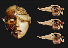 Load image into Gallery viewer, The Anatomical Venus