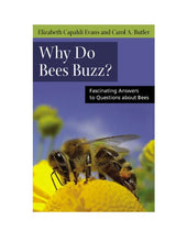 Load image into Gallery viewer, Why Do Bees Buzz?: Fascinating Answers To Questions About Bees (Animals Q & A)