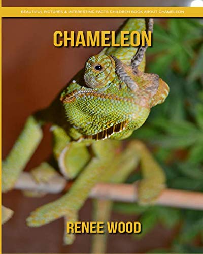 Chameleon: Beautiful Pictures & Interesting Facts Children Book About Chameleon
