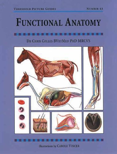 Functional Anatomy: Threshold Picture Guide No 43 (Threshold Picture Guides)