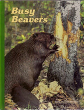 Load image into Gallery viewer, Busy Beavers (Books For Young Explorers)