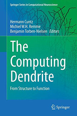 The Computing Dendrite: From Structure To Function (Springer Series In Computational Neuroscience)