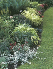 Load image into Gallery viewer, Creating Beds And Borders: Creative Ideas From America'S Best Gardeners (Fine Gardening Design Guides)
