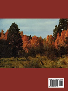 Seeds Of Woody Plants In North America: Revised And Enlarged Edition