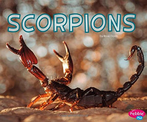 Scorpions (Meet Desert Animals)