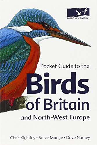 Pocket Guide To The Birds Of Britain And North-West Europe (Helm Field Guides)