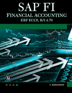 Sap Fi: Financial Accounting (Computer Science)