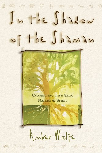 In The Shadow Of The Shaman: Connecting With Self, Nature & Spirit (Llewellyn'S New World Spirituality)