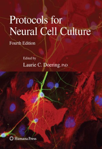 Protocols For Neural Cell Culture (Springer Protocols Handbooks)
