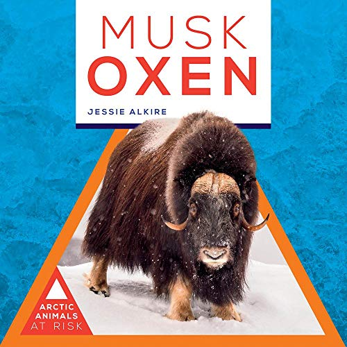 Musk Oxen (Arctic Animals At Risk)