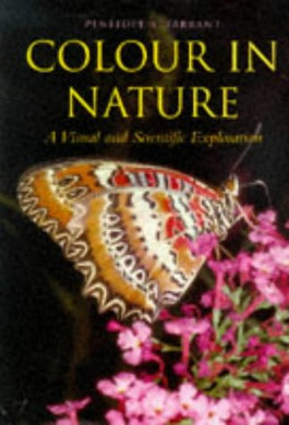 Color In Nature: A Visual And Scientific Exploration