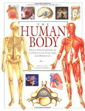 Load image into Gallery viewer, The Human Body (An Illustrated Guide To Its Structure, Function, And Disorders)
