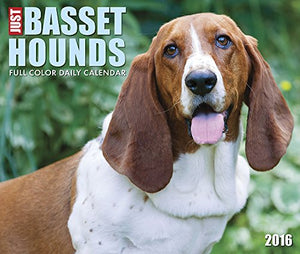 2016 Just Basset Hounds  Box Calendar