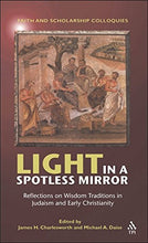 Load image into Gallery viewer, Light In A Spotless Mirror: Reflections On Wisdom Traditions In Judaism And Early Christianity (Faith And Scholarship Colloquies)