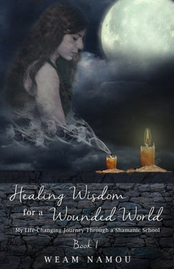 Healing Wisdom For A Wounded World: My Life-Changing Journey Through A Shamanic School (Book 1) (Volume 1)