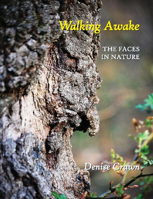 Walking Awake: The Faces In Nature