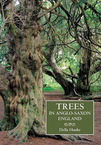 Trees In Anglo-Saxon England: Literature, Lore And Landscape (Anglo-Saxon Studies)