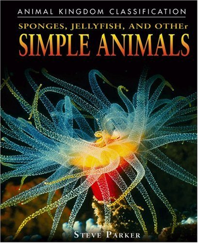 Sponges, Jellyfish, And Other Simple Animals (Animal Kingdom Classification)