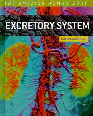 Excretory System (The Amazing Human Body)
