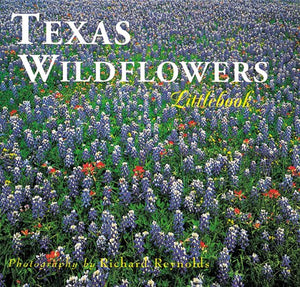 Texas Wildflowers (Texas Littlebooks)