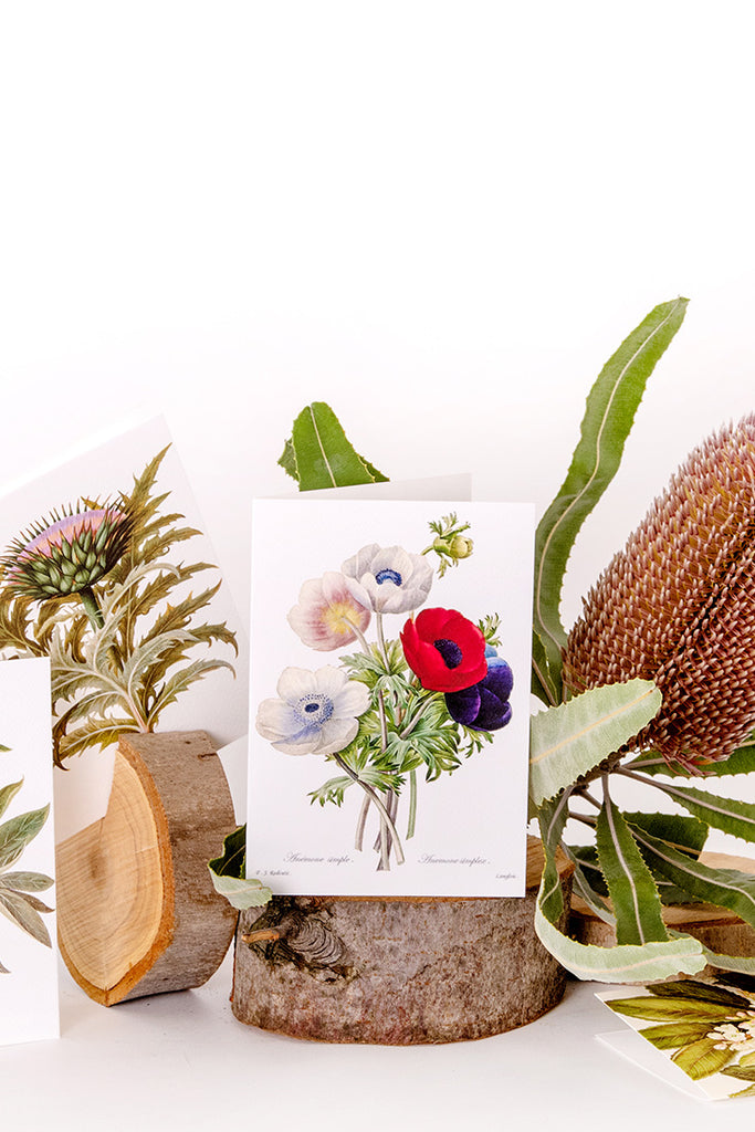 Moements Botanic Cards